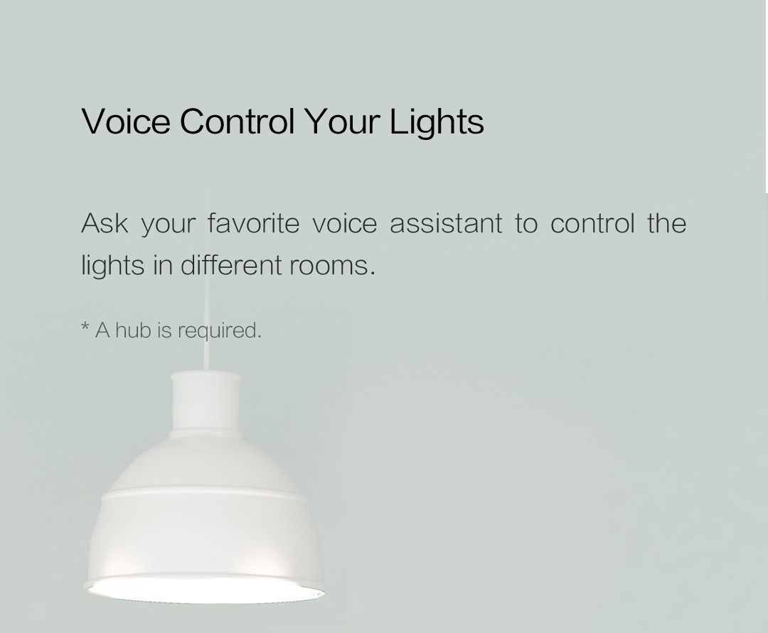 Ask your favorite voice assistant to control the lights in different rooms rhrough our smart switch