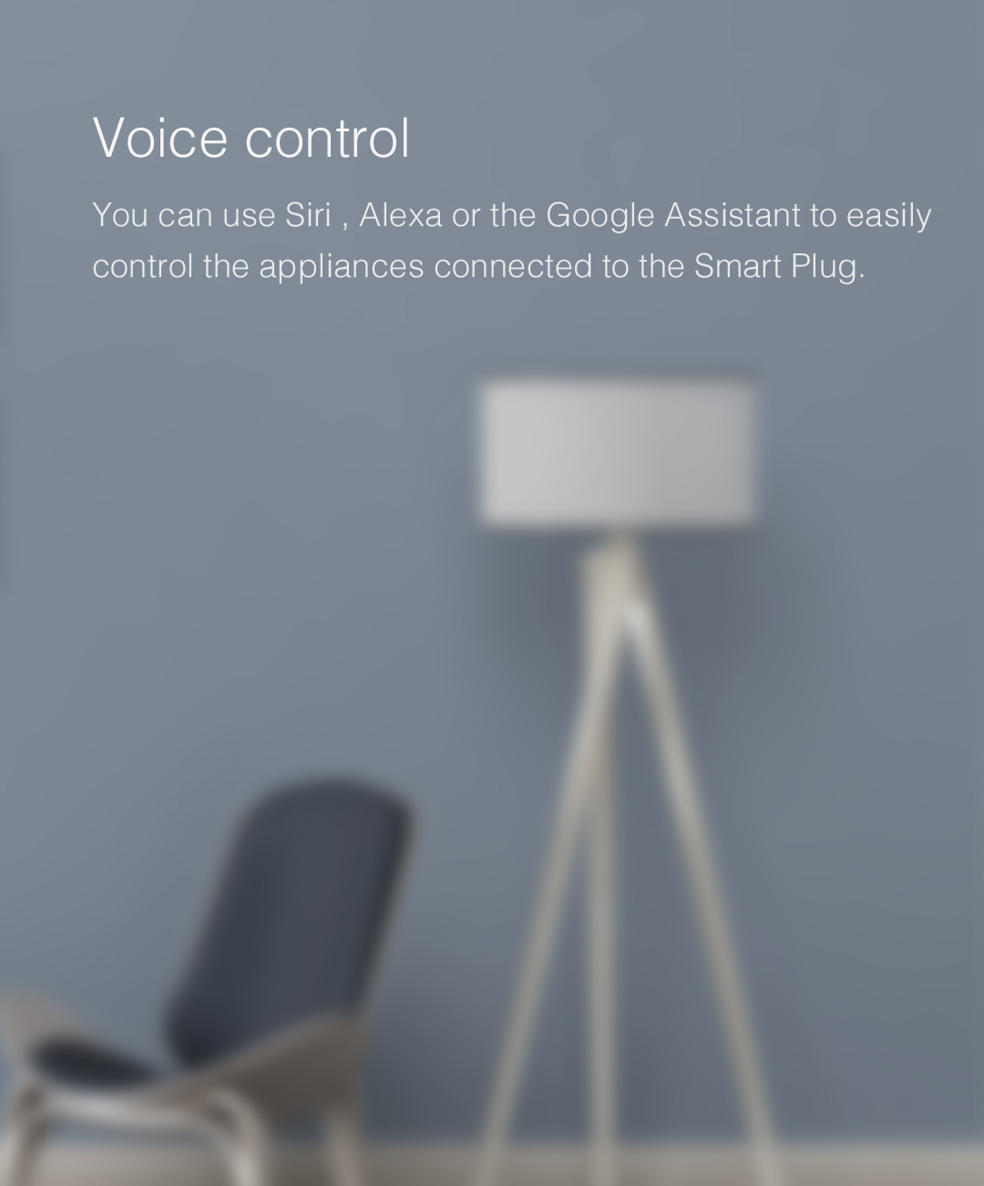 smart socket controlled by Siri, Google Assistant and Alexa